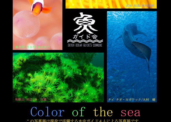 現役ガイド4人による写真展「海のシェルパ展」開催 2/19〜21