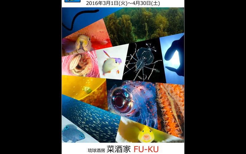写真展「新世代ガイドブログ 〜若気の至り〜」開催
