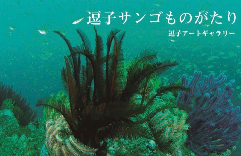 長島敏春写真展「逗子サンゴものがたり」