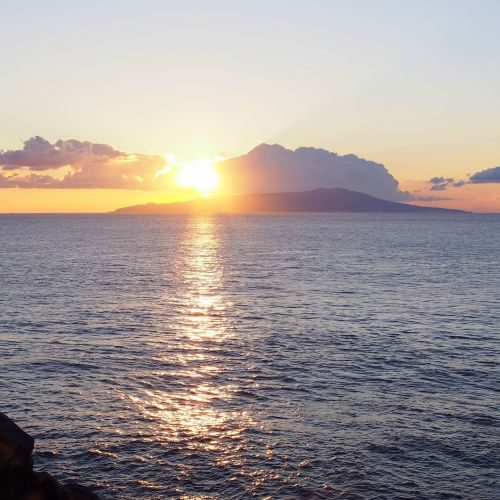 #DIVERMAG 伊豆大島の写真をPICK UP!!