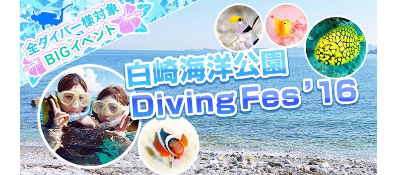 白崎海洋公園 ダイビングフェス'16開催! 5/14、15