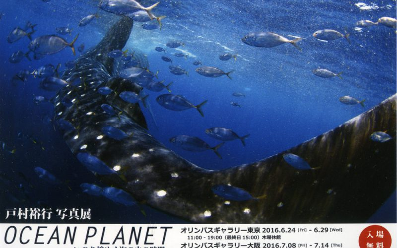 戸村裕行写真展「OCEAN PLANET〜いのち煌めく海の中の時間〜」が東京・大阪で開催 6/24〜