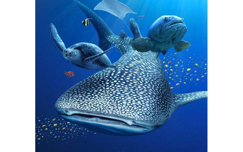 7/15から「Sony Aquarium」開催! 鍵井靖章氏のトークショーも