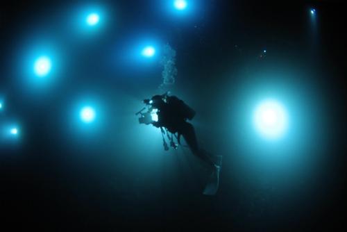 J-CUEセミナー ライトトラップ系ダイビングの面白さを探る!