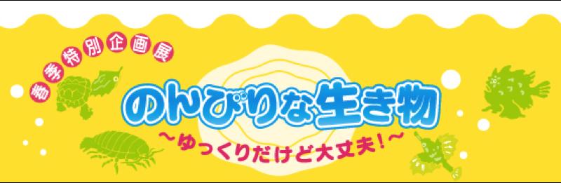 下関市・海響館 のんびりな生き物たちを展示中!