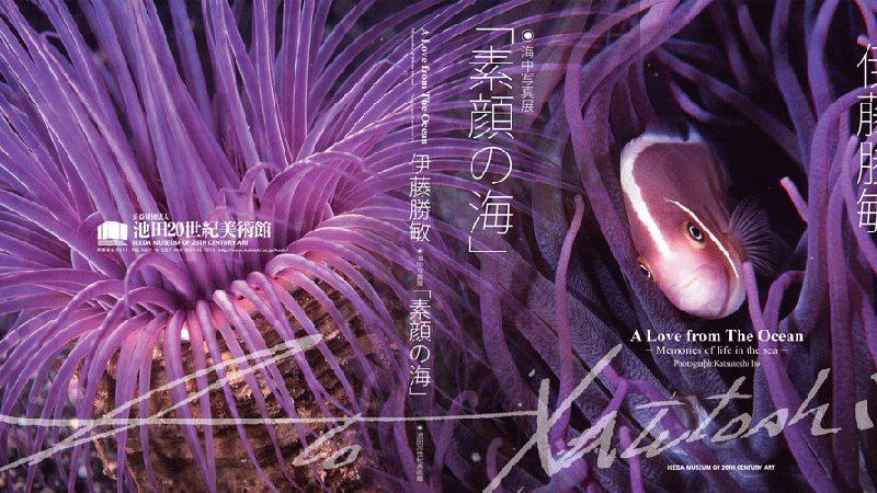 伊藤勝敏「素顔の海」海中写真展