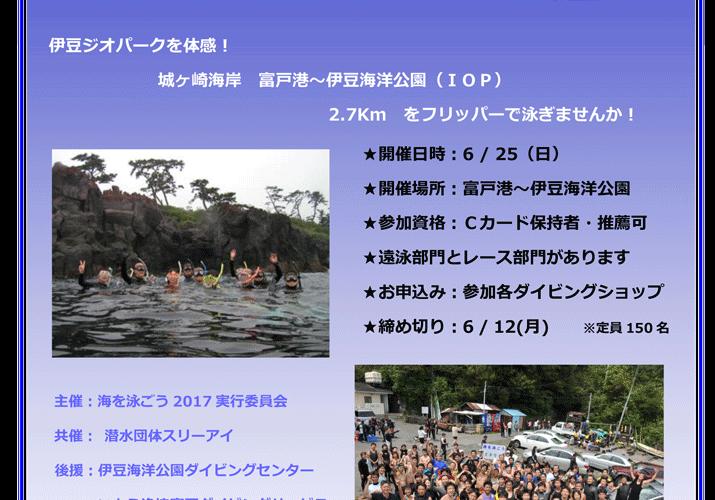 東伊豆でフリッパー大会「海を泳ごう2017」