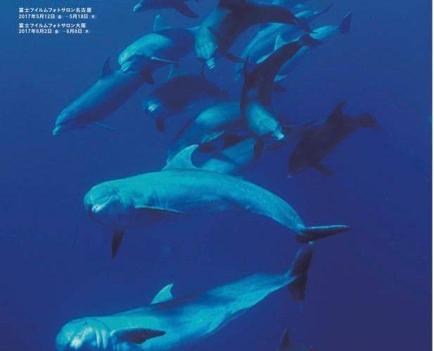 越智隆治写真展「INTO THE BLUE 〜青にとける〜」