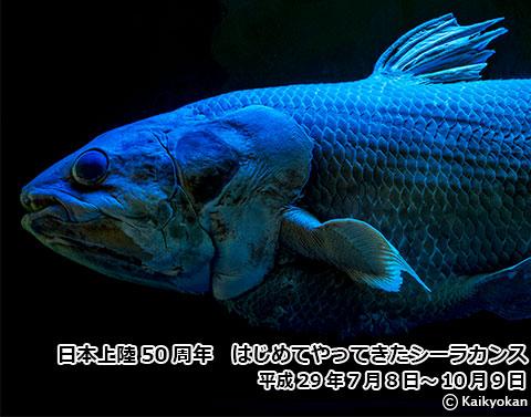 日本初上陸のシーラカンス標本を展示