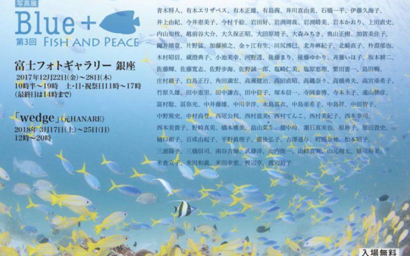 写真展『Blue+』銀座にて開催