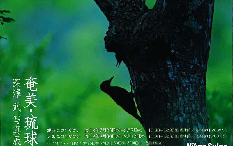 深澤武写真展「奄美・琉球」