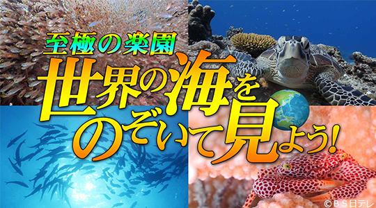 BS日テレ「至極の海 世界の海をのぞいて見よう!」