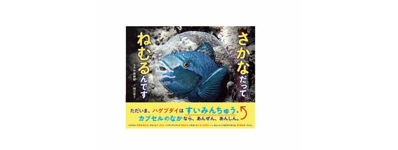 魚の寝姿写真絵本「さかなだってねむるんです」発売中