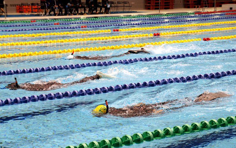第22回 全日本スポーツダイビング室内選手権大会開催