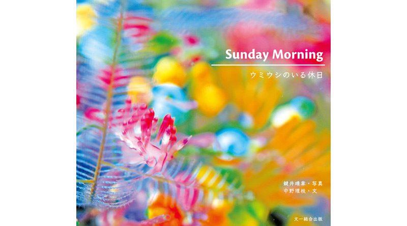 鍵井靖章さんと中野理枝さんがコラボしたウミウシ写真集、5/28発売