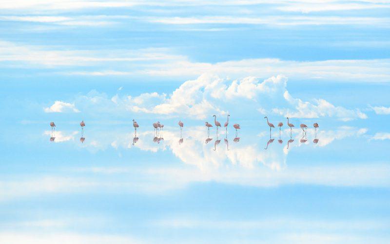 6/4〜24 高砂淳二さん写真展『Planet of Water』新宿で